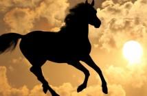 jaar van het paard